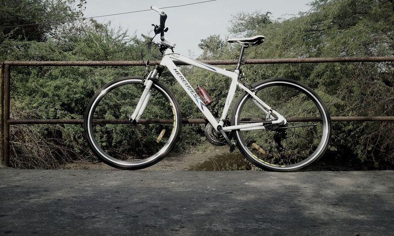 Bike Taking Photos Ride