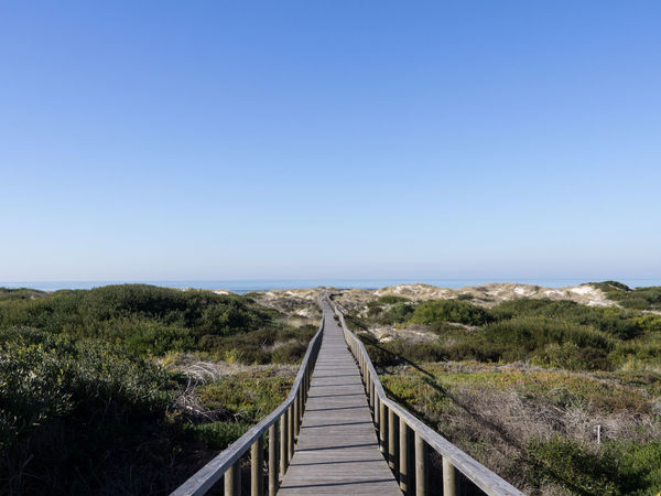 Atlantic Ocean Beach Beachphotography Beauty In Nature Bridge - Man Made Structure Clear Sky Copy Space Day Dunas Free Freedom Growth Hiking Nature Nature Path Nature Reserve No People Outdoors Path Perfect Day Portugal Sky The Way Forward Wood Bridge Wood Path