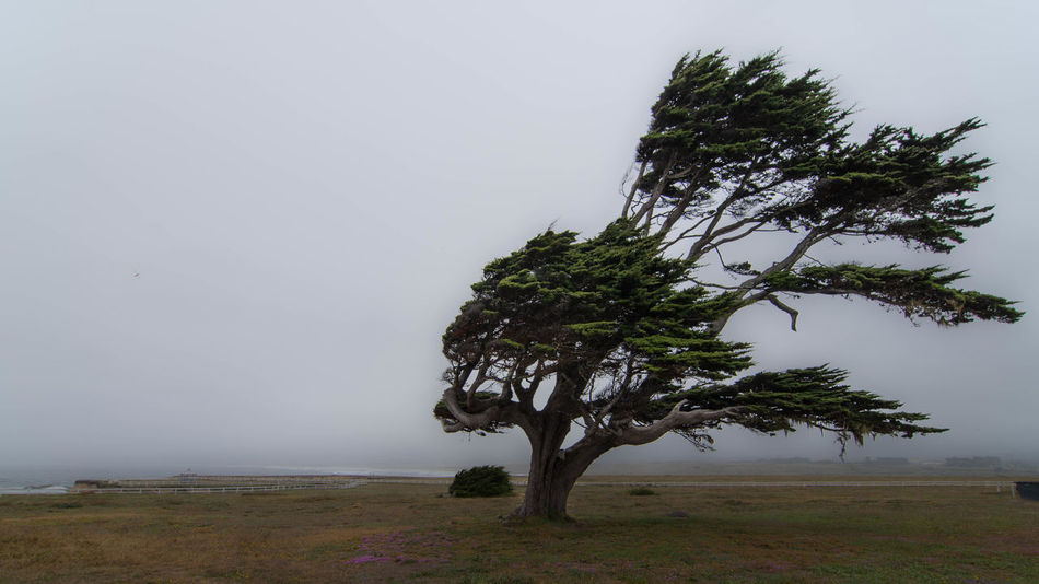 Beautiful stock photos of storm, Day, Landscape, Nature, No People