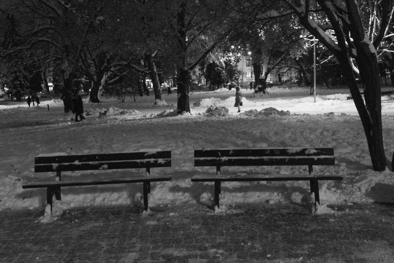 My Year My View Bench Tree Outdoors Nature Day No People Beauty In Nature Winter Riga Latvia Two Lonely Evening Benches Park Evening Snow
