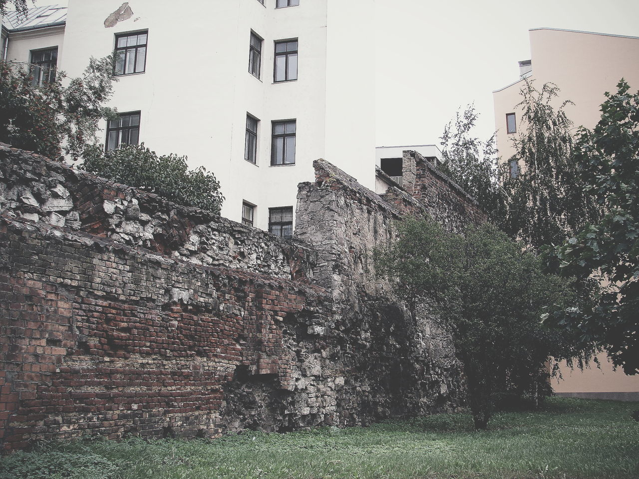 Sky City Growth No People Nature Tree Outdoors Day Architecture Old Town Riga Destroyed City Wall Latvija Vintage Photo