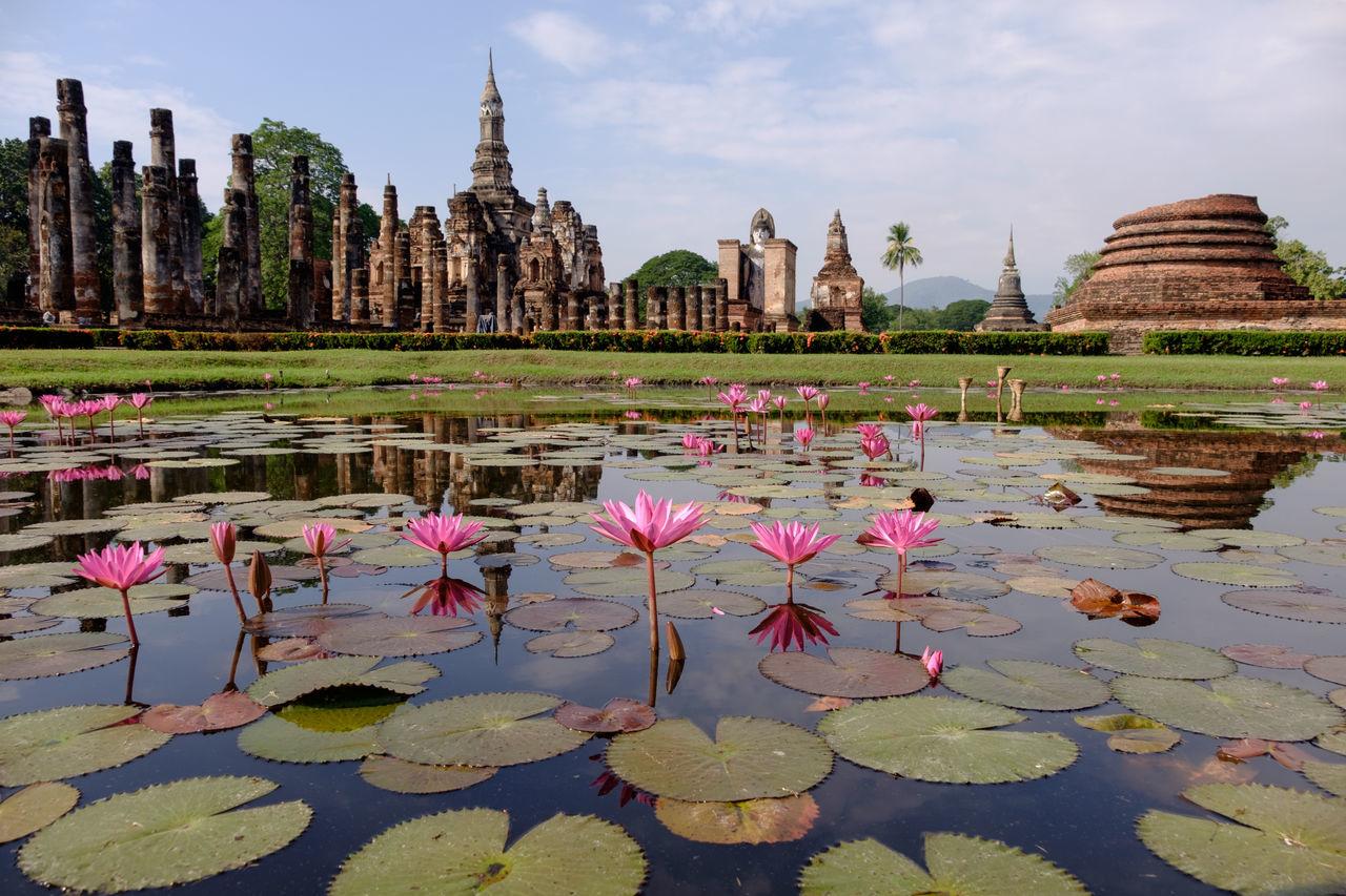 Sukhothaihistoricalpark, sukhothai, สุโขทัย, อุทยารประวัติศาสตร์สุโขทัย, ประเทศไทย, thailand Travel Destinations History Cultures Travel Place Of Worship Outdoors