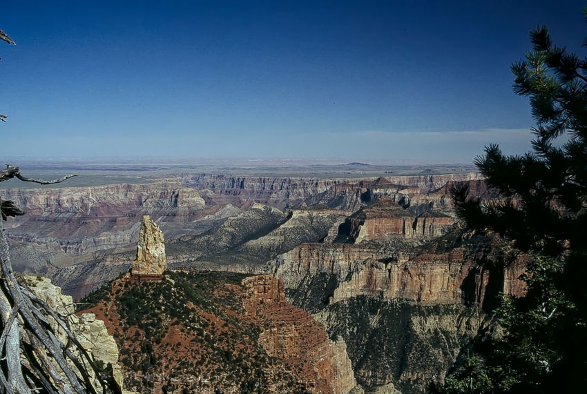 Grand Canyon: View from North Rim (1993) 1993 Analogue Photography Beauty In Nature Blue Clear Sky Day High Angle View Horizon Over Land Mountain Nature Non-urban Scene Outdoors Panoramic Remote Scenics Sky Tourism Tranquil Scene Travel Destinations Tree Wide Shot