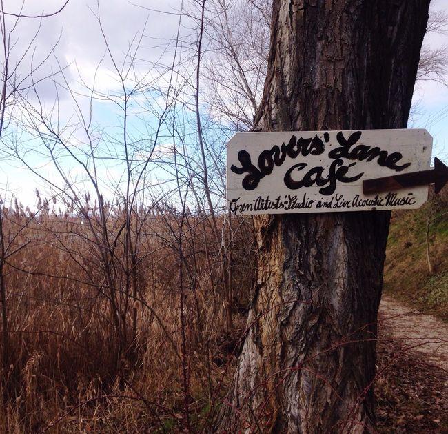 Lake Tree🌳🍂🍃🍁 Sing Coffee Time Coffee ☕ Café !