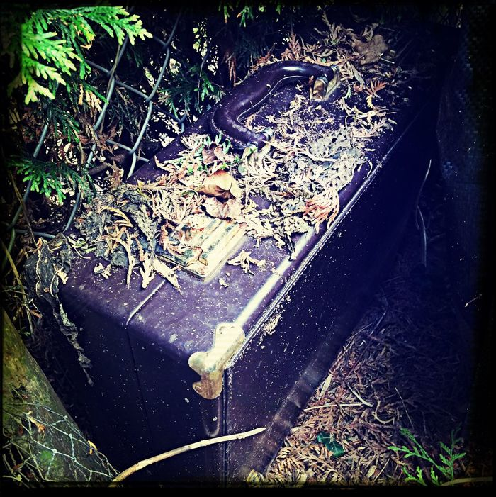 So, I guess no one needs this suitcase anymore? ;) I wonder what's inside ... Ravaged Wednesday Decay Mysterious Moments