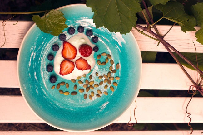 Fresh berries on the turquoise plate. Breakfast inspiration. Berries And Creamy Yogurt Berries And Yogurt And Seeds Blue Blueberry Breakfast Mission Breakfast Plate On The Bench Breakfast With Berries Food Freshness Green On Turqu Healthy Food Morning Breakfast Multi Colored Pumpkin Seed Ready-to-eat Red On Blue Still Life Strawberry Temptation