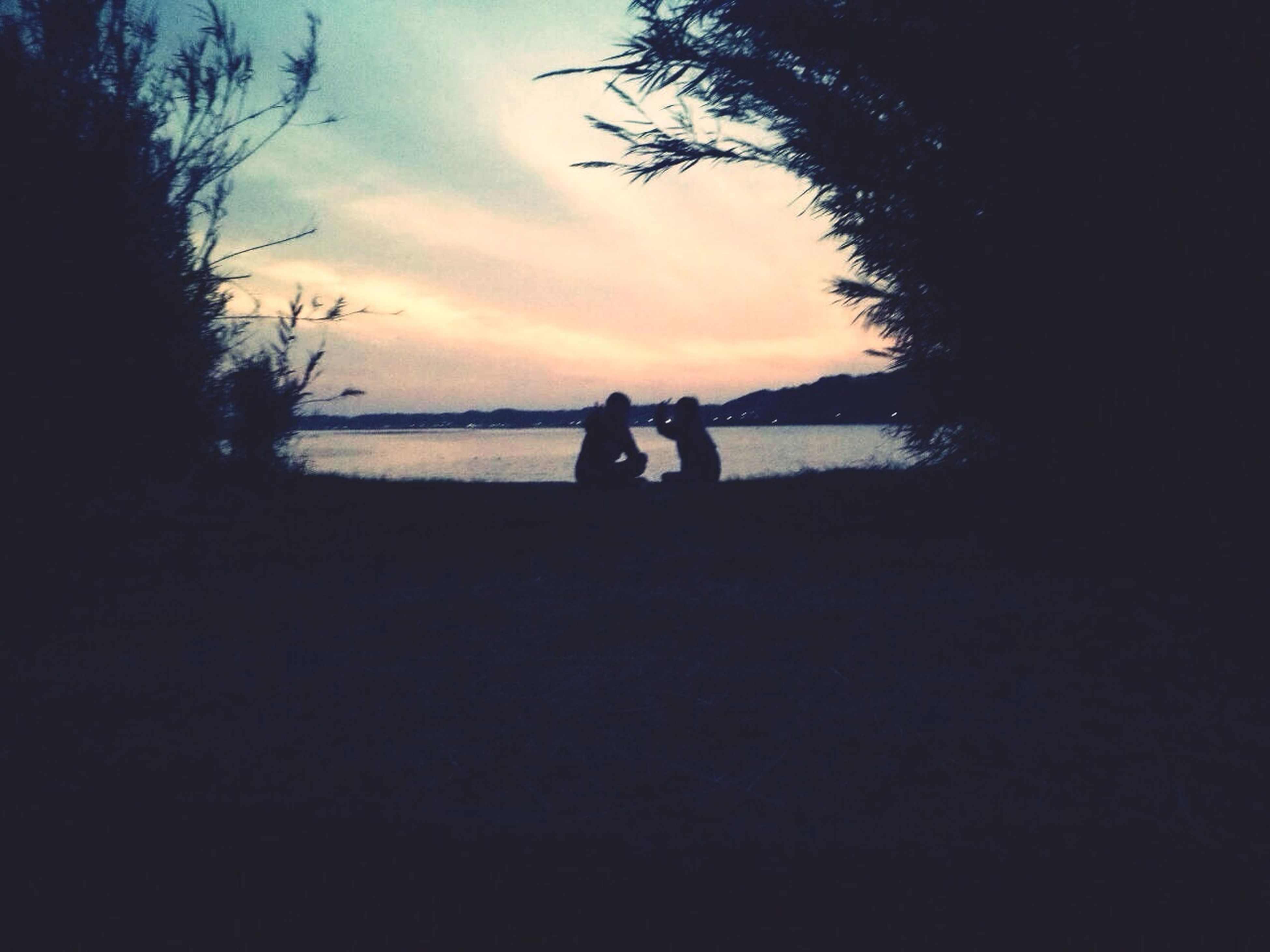 silhouette, sky, leisure activity, sunset, lifestyles, tranquil scene, tranquility, tree, men, scenics, water, beauty in nature, togetherness, nature, cloud - sky, beach, sea, person