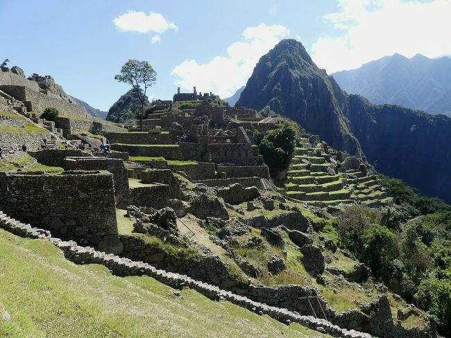 Mountain Travel Destinations Cloud - Sky Outdoors Travel No People Ancient Civilization Nature Mountain Range Day Agriculture Terraced Field Landscape Sky Tree Beauty In Nature EyeEmNewHere Macchu Picchu