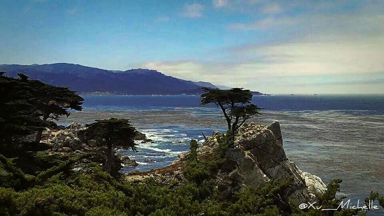 I walk the lonely road... The Explorer - 2014 EyeEm Awards The Environmentalist – 2014 EyeEm AwardsNature Landscape