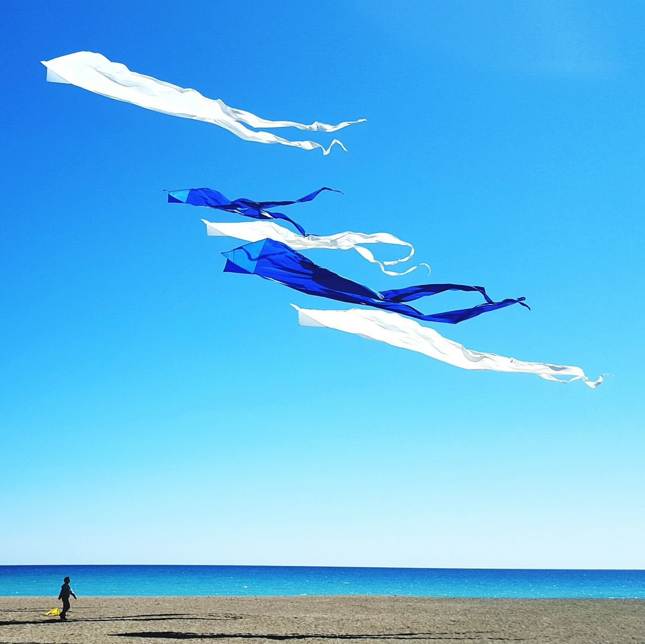 Lakeshore Lake Ontario The Beaches Kites Sunny Day Blue Sky Spring Breeze The Great Outdoors With Adobe