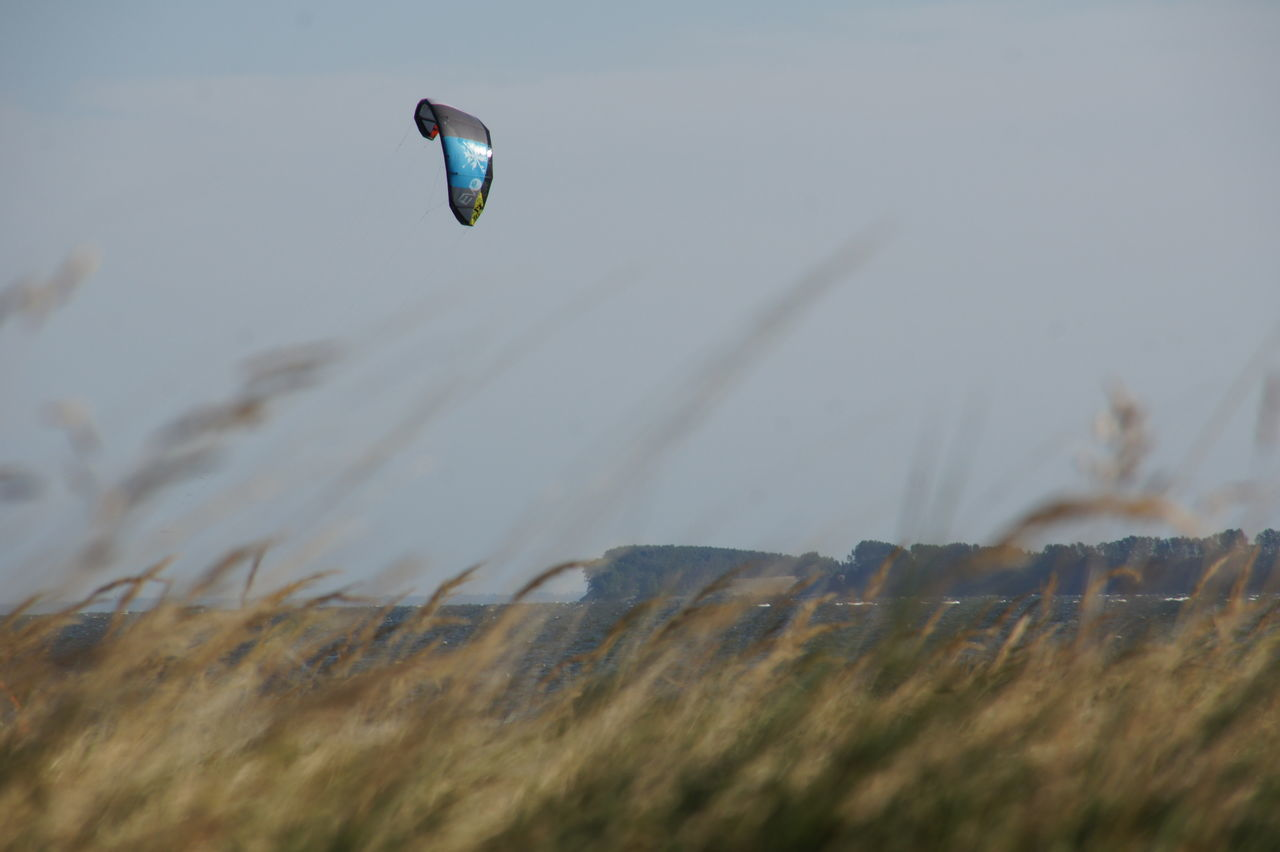 Flying Kite Kitesurfing Kites On The Beach Flying Kite Grass Outdoors Nature No People Beauty In Nature Day Holiday Summer Germany Rügen