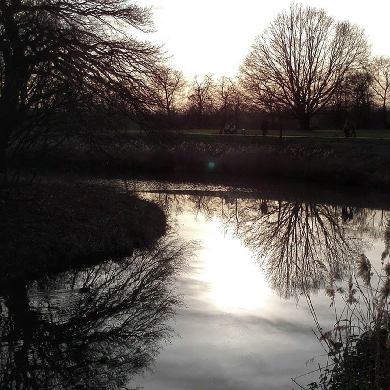 Gestern im Park der BurgLinn entstanden als der Tag sich langsam dem Ende neigte. Park LinnerBurg Burg Linn Krefeld KrefeldLinn nrw instamood iggermany castle