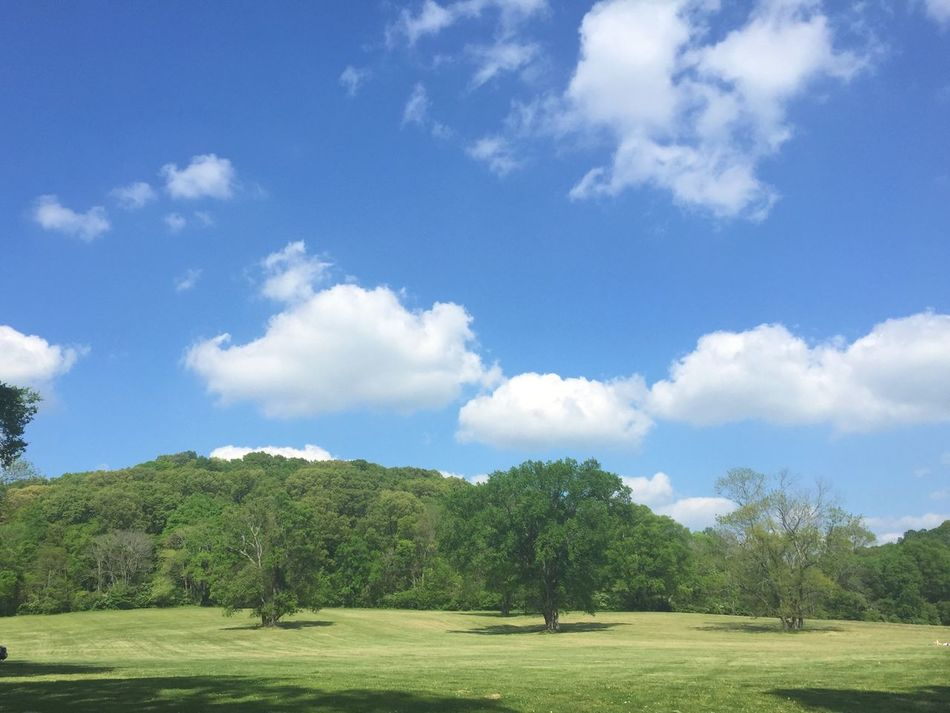 Nashville PercyWarner Nature Spring Tennessee