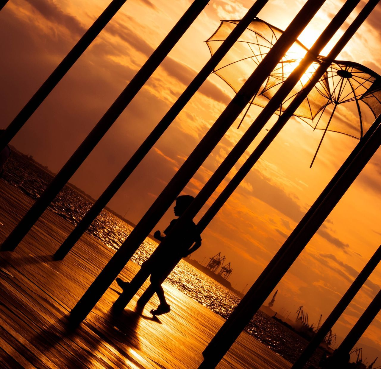 Sunset Silhouettes Eye Em Nature Lover Sunset Sun_ Collection