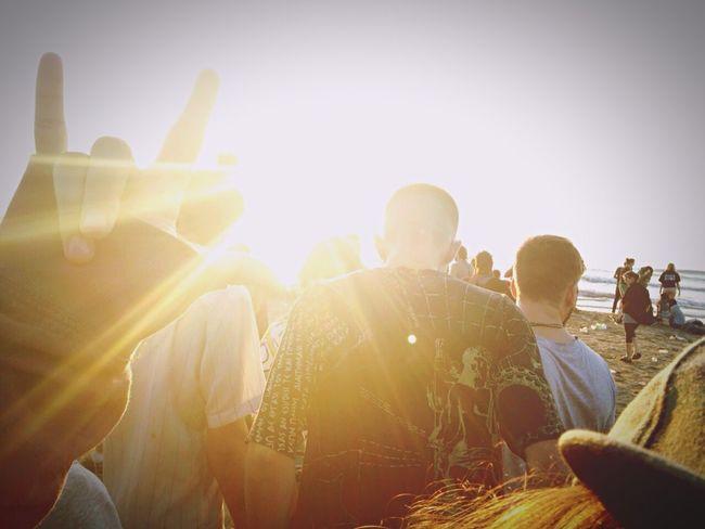 Sunrise Sunshine Rave 1L!