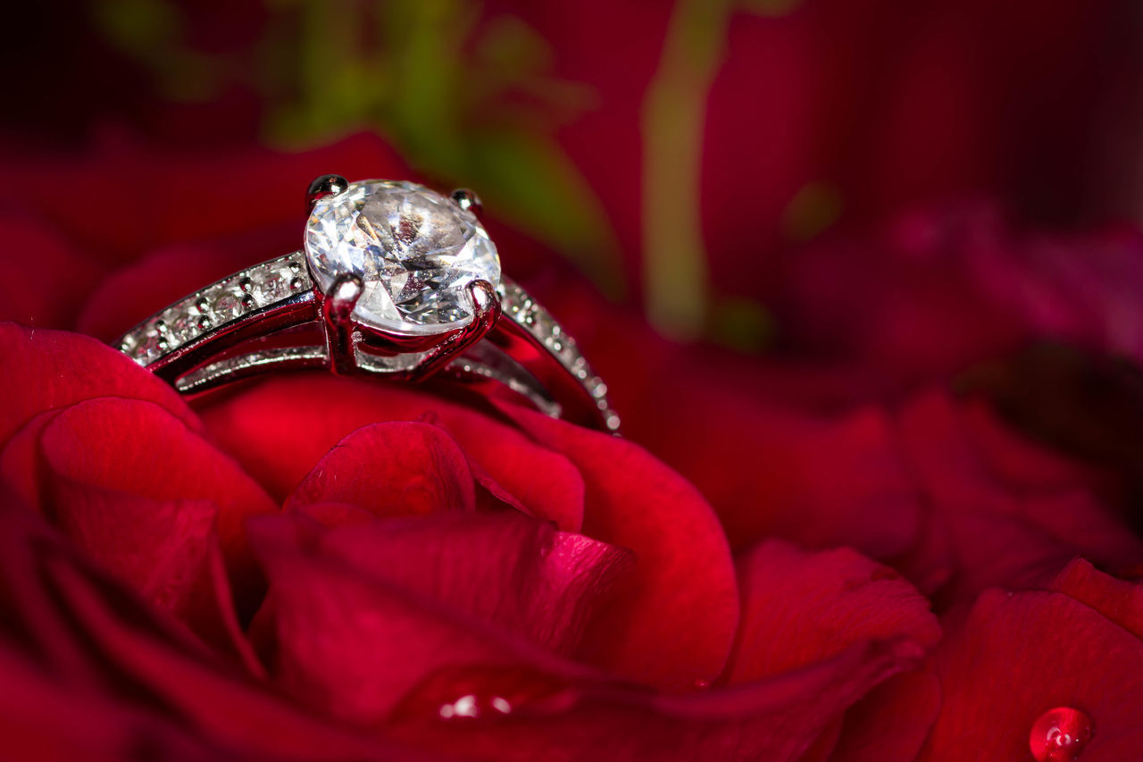 Ring on Roses 90mm Canon Close-up Detail Flower Gemstone  Gift Jewelry Love Macro Petals Red Ring Rose🌹 Silver  Stone Tamron