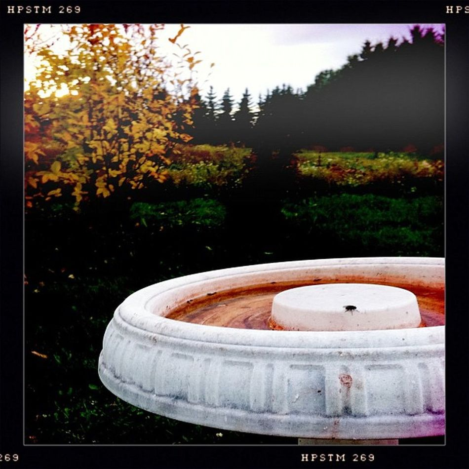 Red Fountain Alistairhenning Instagram Albertaart Canada farm rural country alberta red blood fountain hipstamatic