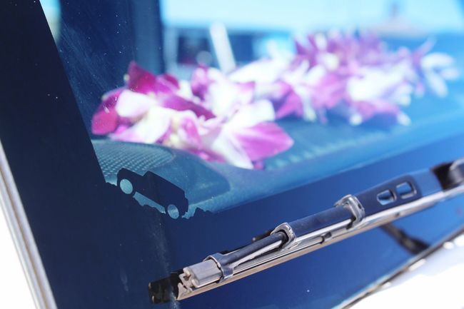 Hawaii Maui Lei Jeep Summit On The Road In The Wild In The Woods In The Window Flower