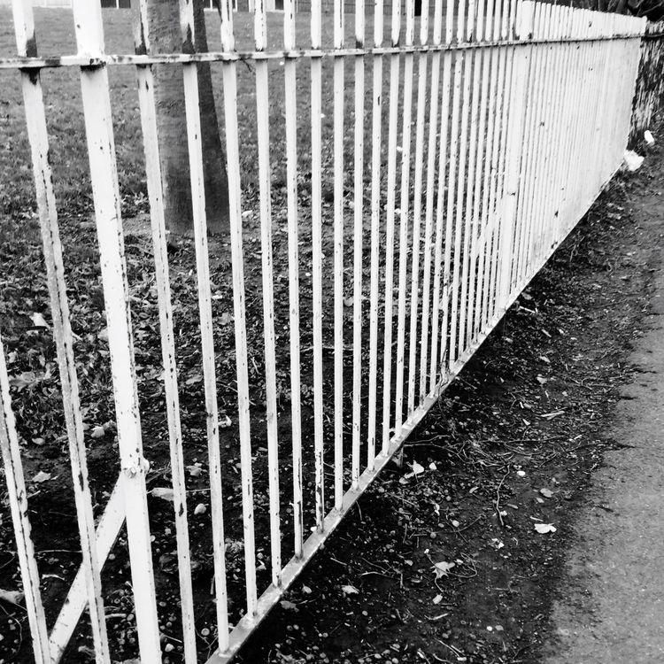Blackandwhite Fence Photography