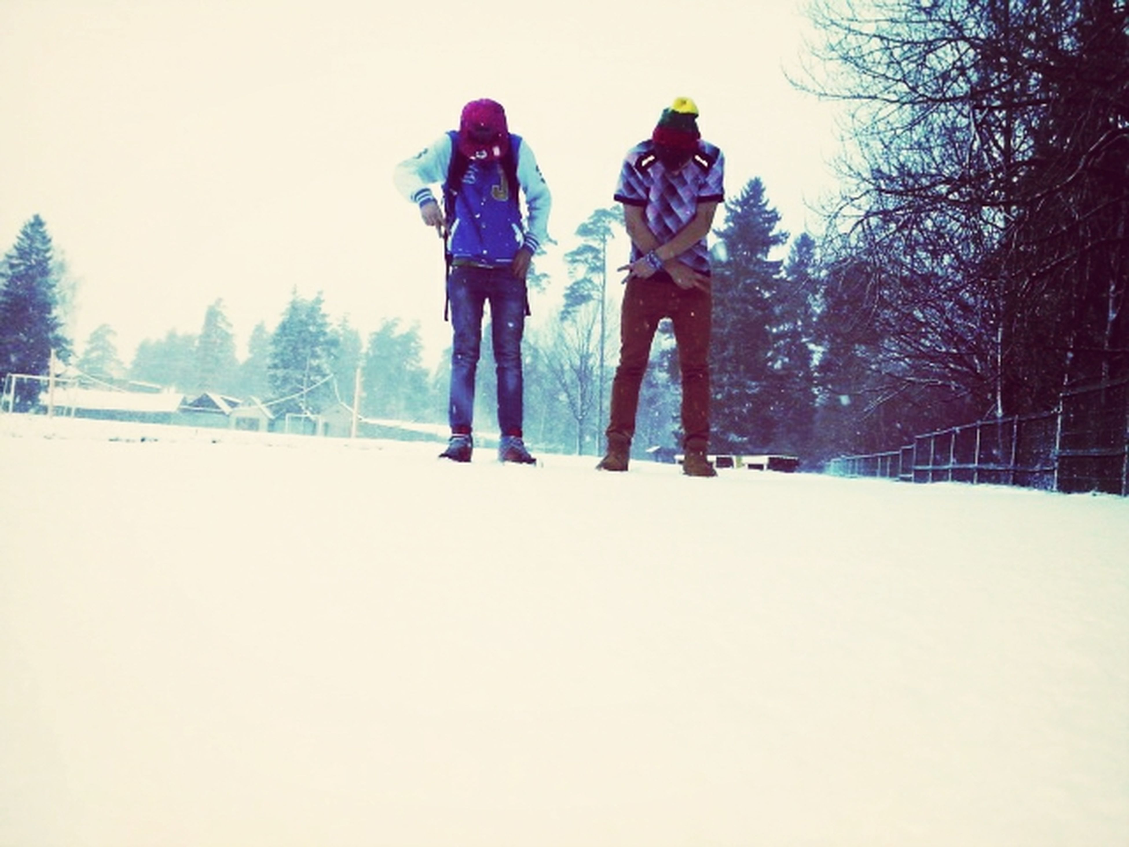winter, snow, cold temperature, season, lifestyles, leisure activity, full length, tree, rear view, warm clothing, weather, walking, men, childhood, clear sky, field, togetherness