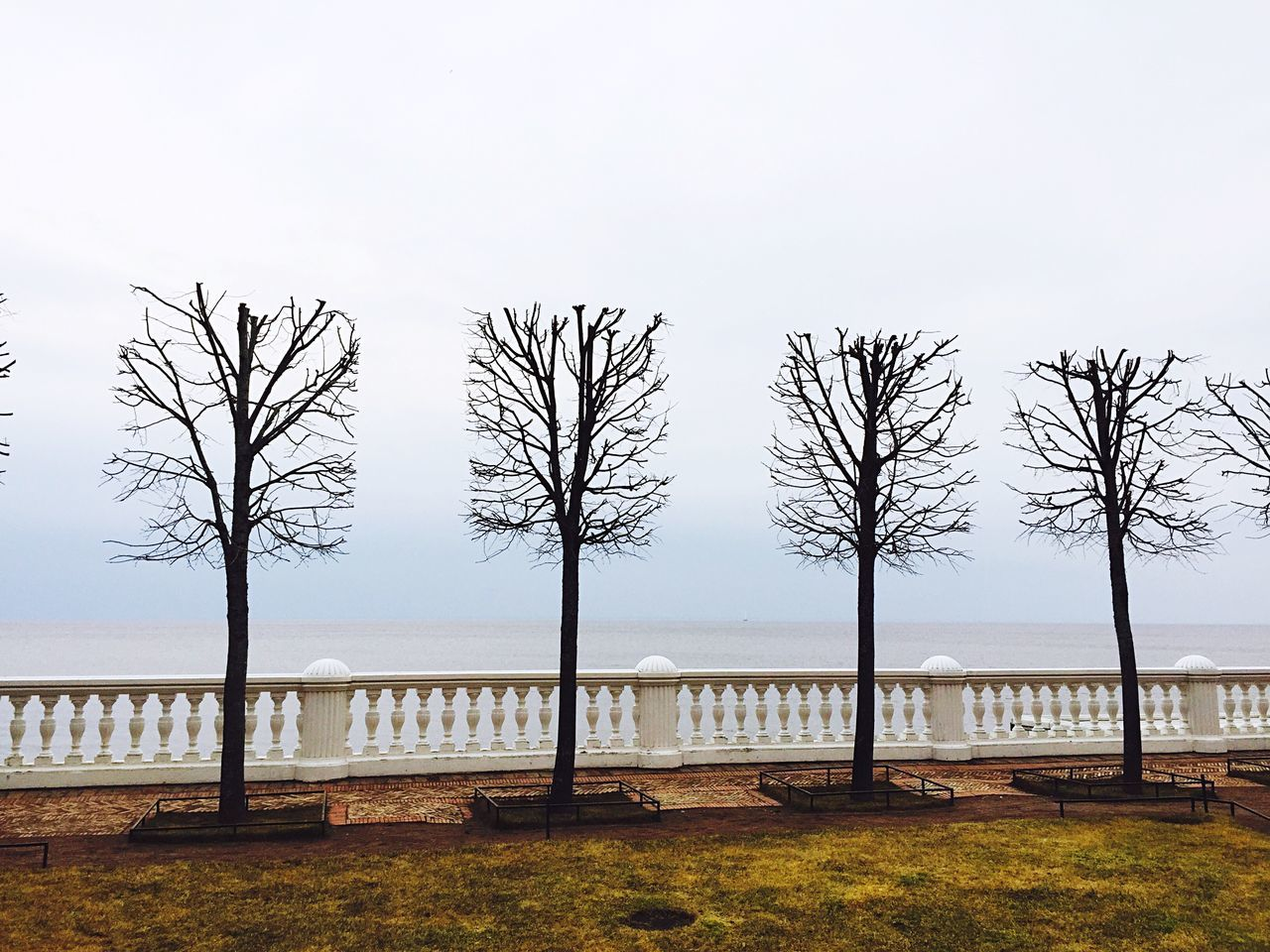 Showcase April Petergof Spring Is Coming  Gulf Of Finland