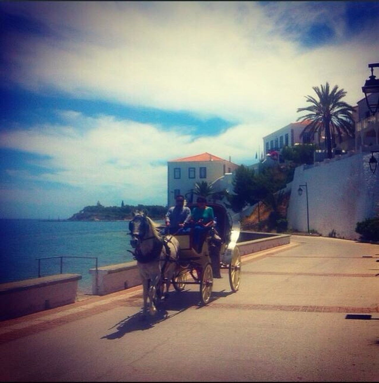 Spetses Island Grecce Summertime Working Animal Horse Cart Real People Island Life Mode Of Transport Travel Destinations Travel Photography