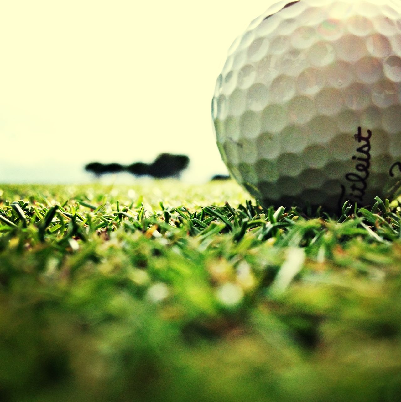 Golfing Lovely day.....starting with some rain....finished with the sun. I like ^_^ EyeEm Best Shots