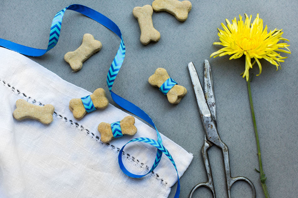 Photoshoot of dog food cookies Animal Diet Animal Food Cookie Cookies Dog Cookies Dog Diet Dog Food Flower Food Blogger Food Decoration Food Photography Province Style Ribbon Scissors