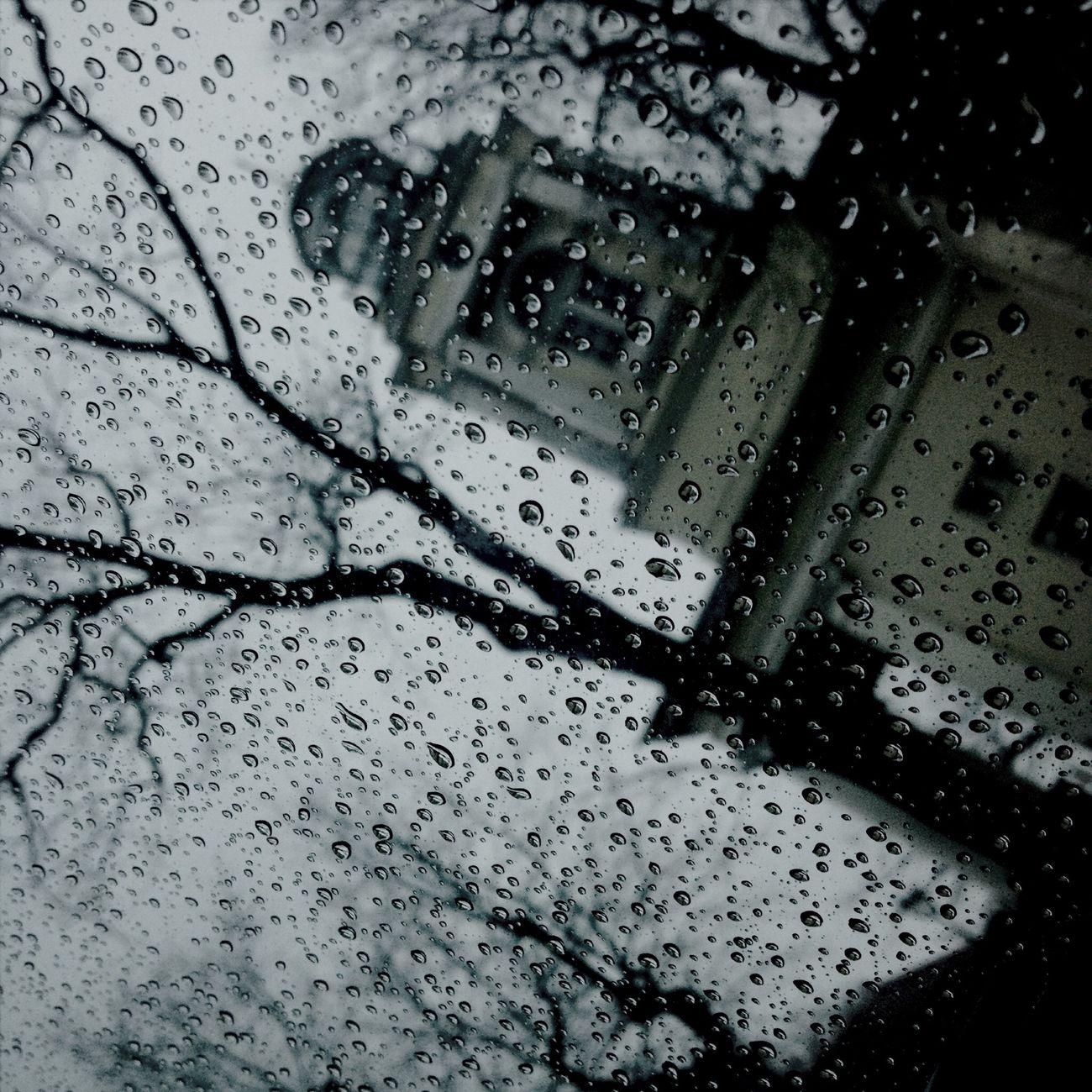 Rainy ? Rain Rainy Days Raindrops Rainy