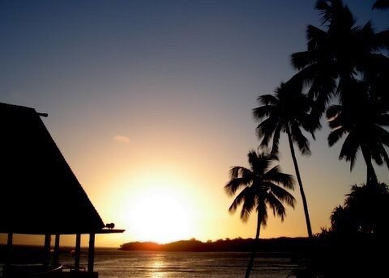 Sunset Fiji Palm Trees Bure Travel Photography Ocean Golden Hour Silhouettes Sky Outdoors Twilight Twilight Sky Sun Travel Photography