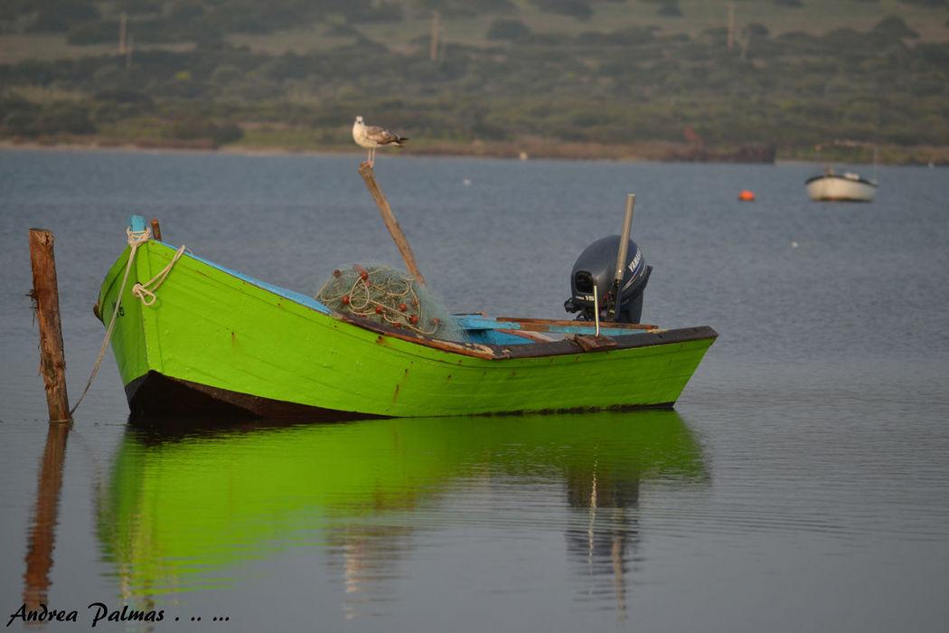 Barca Da Pesca Barça Boat Boats⛵️ Creels Day Fish Fisherman Green Lake Macro Mode Of Transport Nature Nautical Vessel Navigare No People Nässe Outdoors Pescatori Pond Marceddì Relaxing Stagno Verde Water