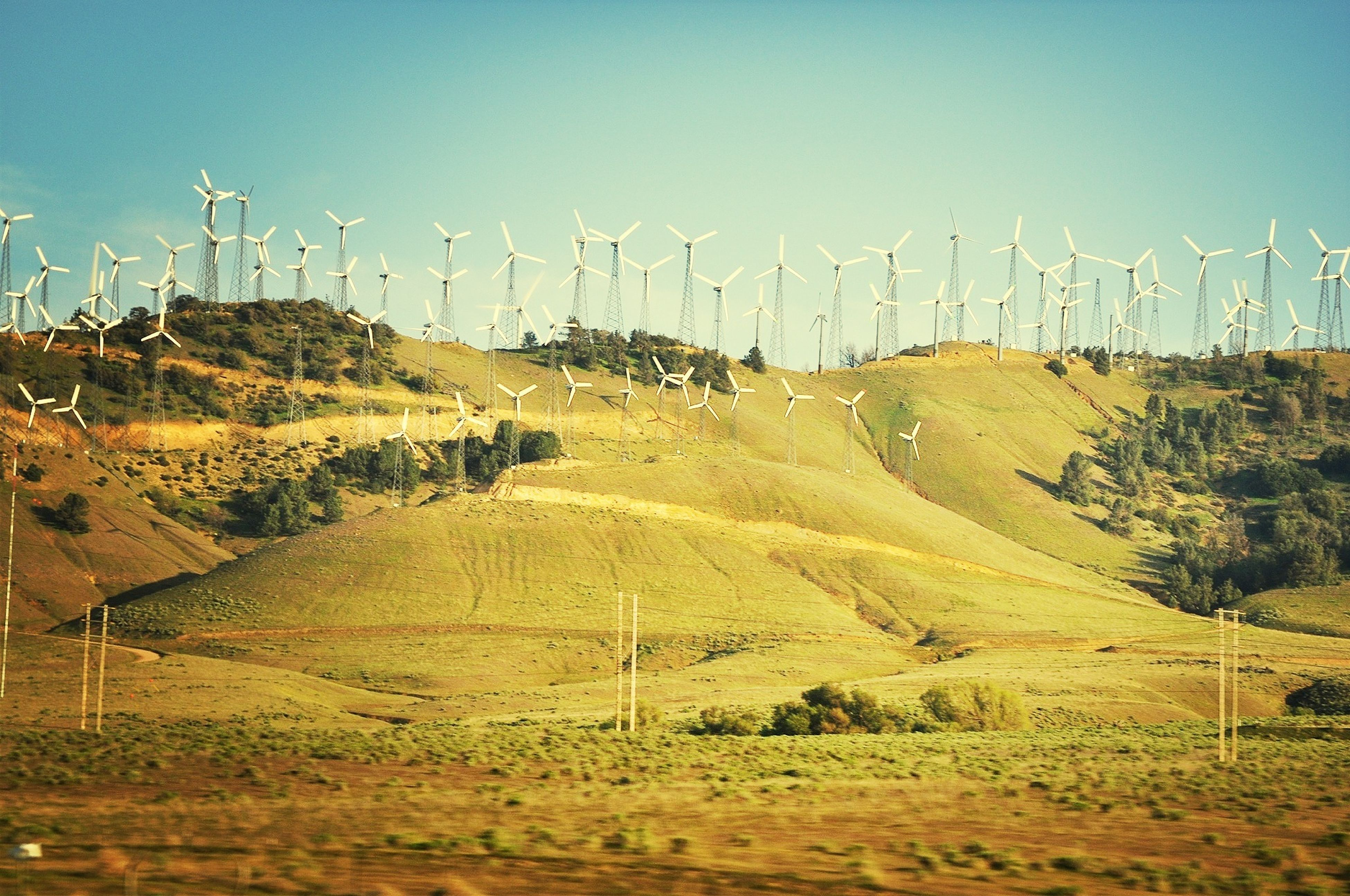 landscape, field, fuel and power generation, clear sky, rural scene, electricity pylon, tranquil scene, tranquility, alternative energy, wind power, wind turbine, agriculture, grass, windmill, mountain, environmental conservation, farm, power line, electricity, power supply