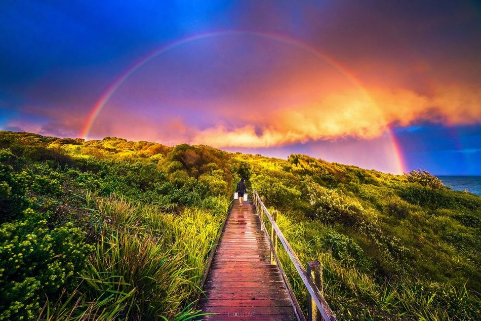 Afternoon cloud tones and rainbows! 🌈 Scenics Sky Beauty In Nature Rainbow The Way Forward Nature Landscape Outdoors Cloud - Sky Idyllic Natural Arch Arch Double Rainbow Tranquility No People Tree Mountain Day Sydney Australia Australian Landscape Nikon Nikonphotography Landscape_photography