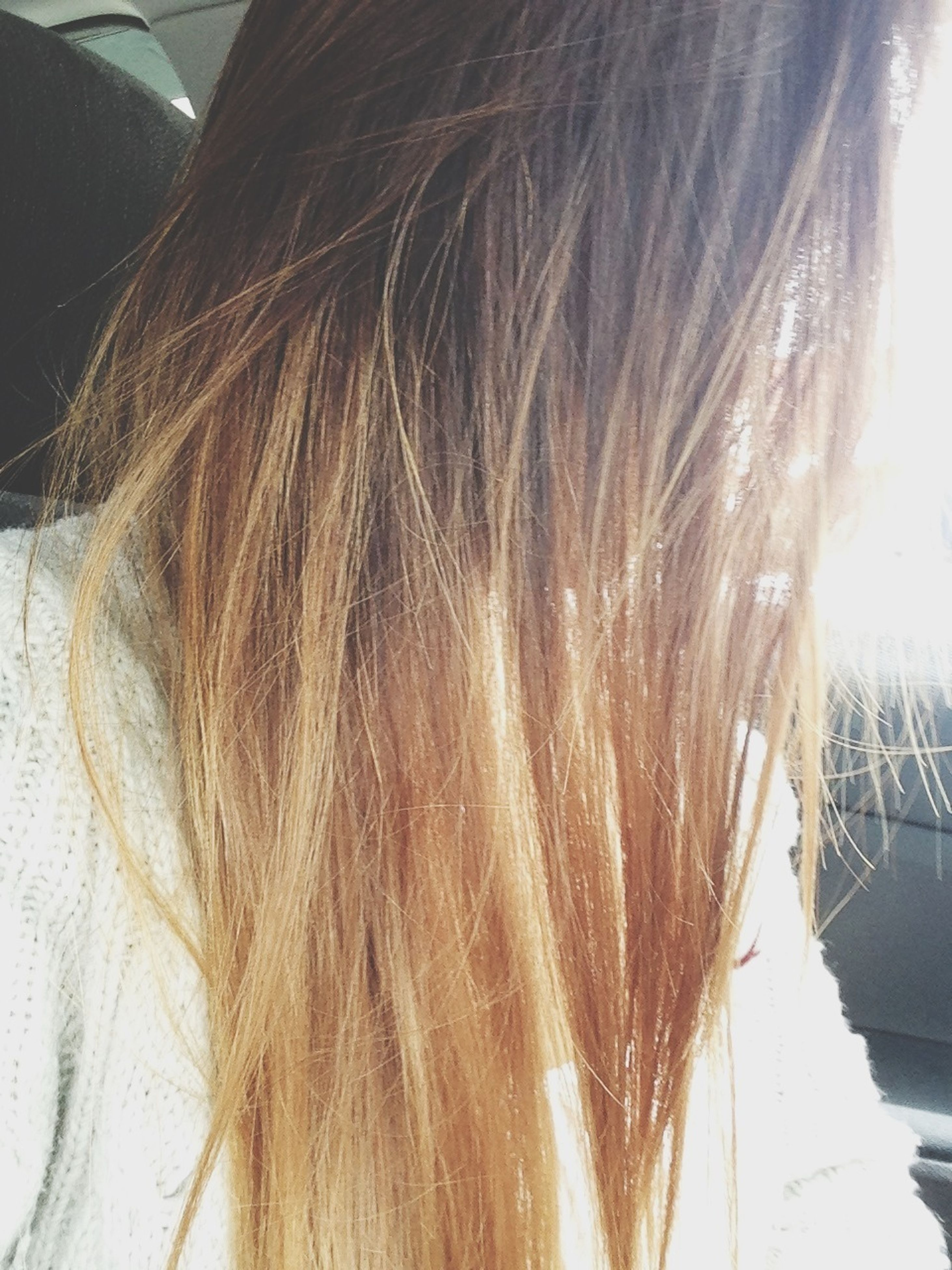 long hair, young women, lifestyles, headshot, young adult, leisure activity, human hair, person, blond hair, close-up, sunlight, brown hair, day, rear view, casual clothing, indoors