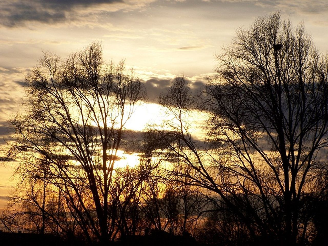 sunset, bare tree, tree, beauty in nature, nature, tranquil scene, scenics, tranquility, sky, silhouette, outdoors, no people, landscape, travel destinations, branch, water, day