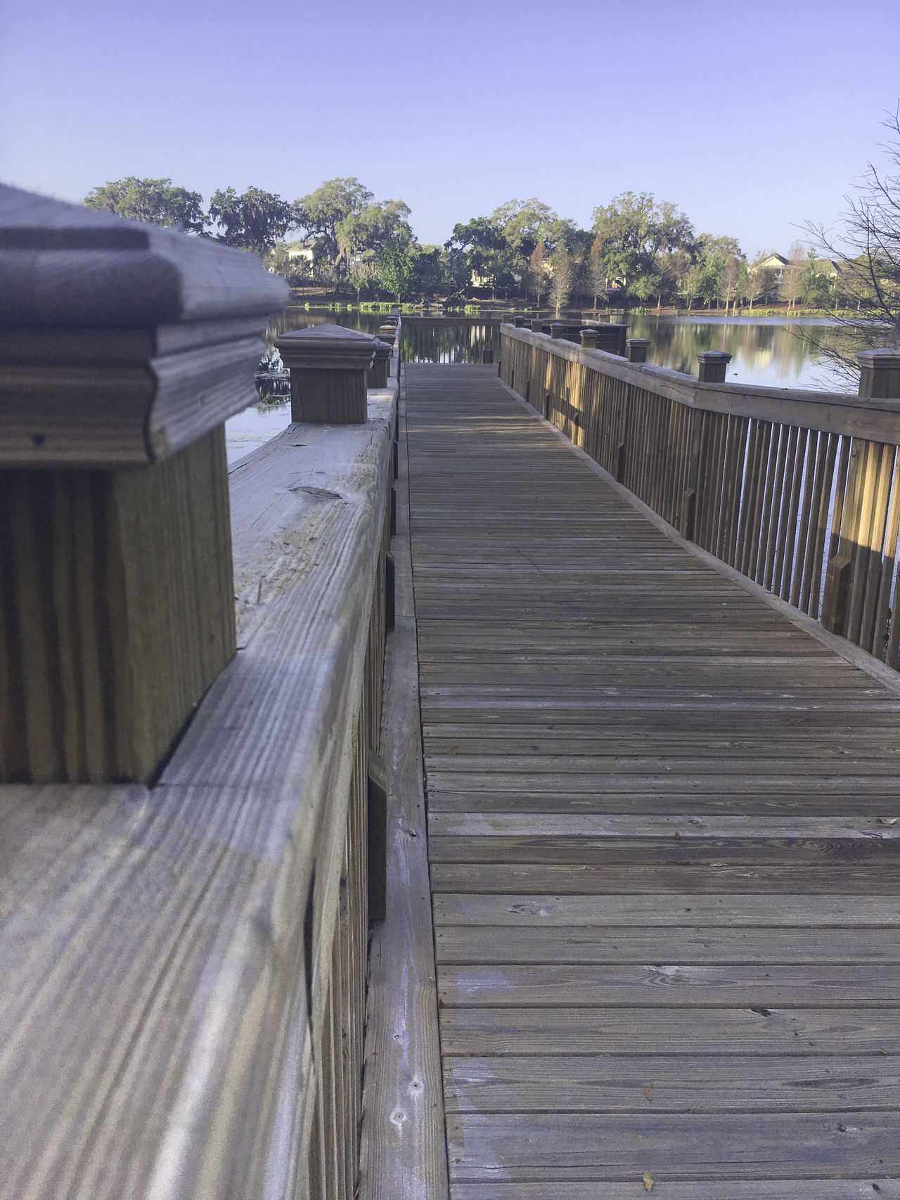 Perspective down the railing Architecture Beauty In Nature Boardwalk Built Structure Day Lines Nature No People Outdoors Perspective Pier Rail Sky The Way Forward Tree Wood - Material Wood Paneling