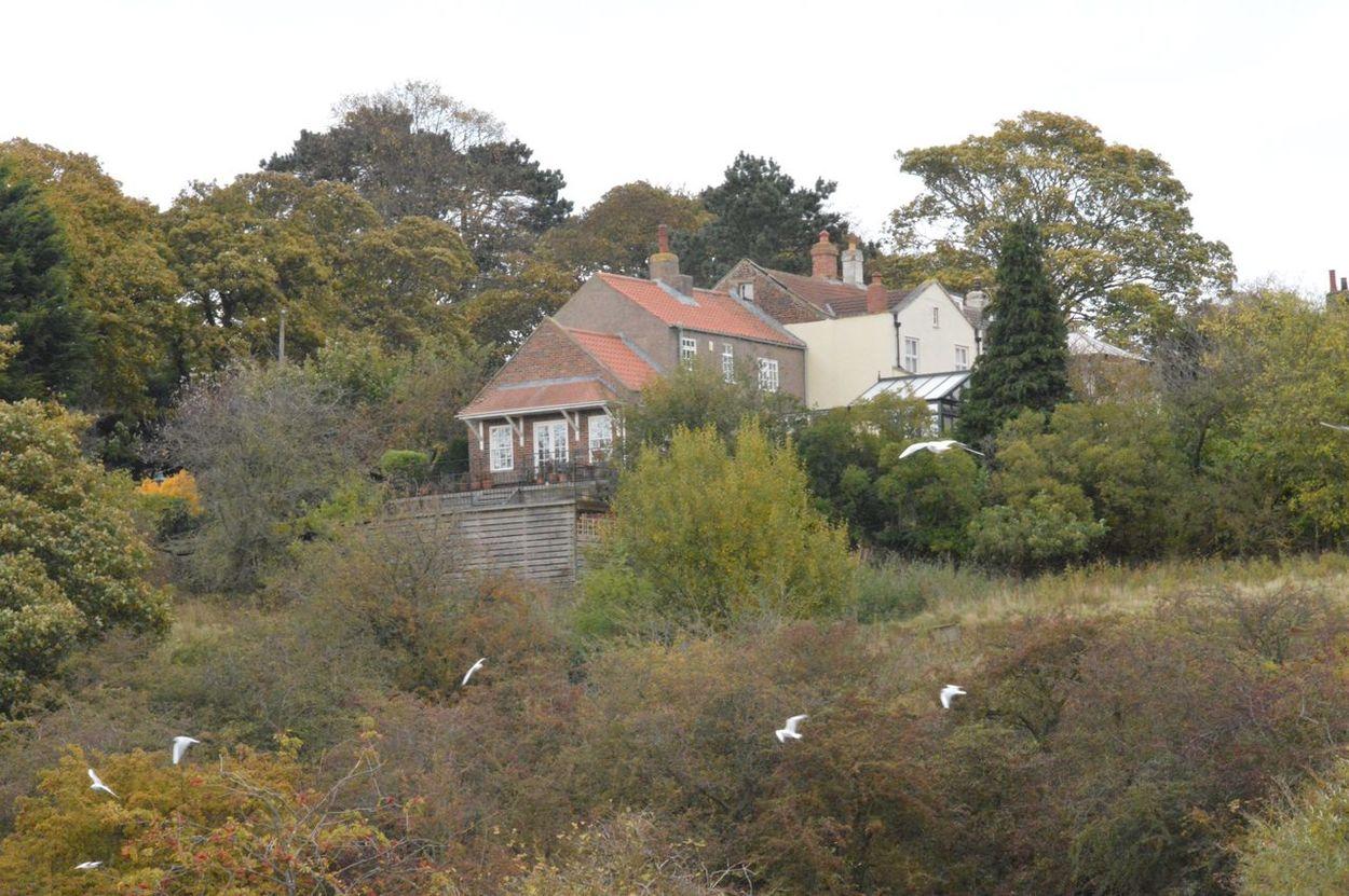 House on hill Scenic Horizon