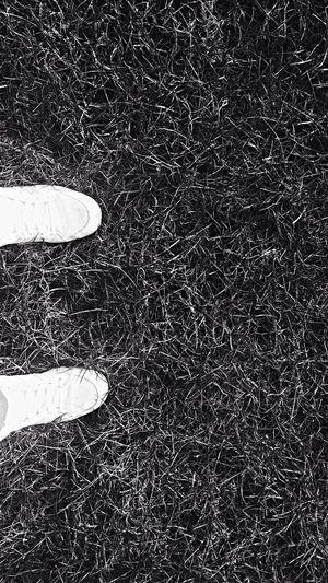 Shoes Photography Enjoying Life