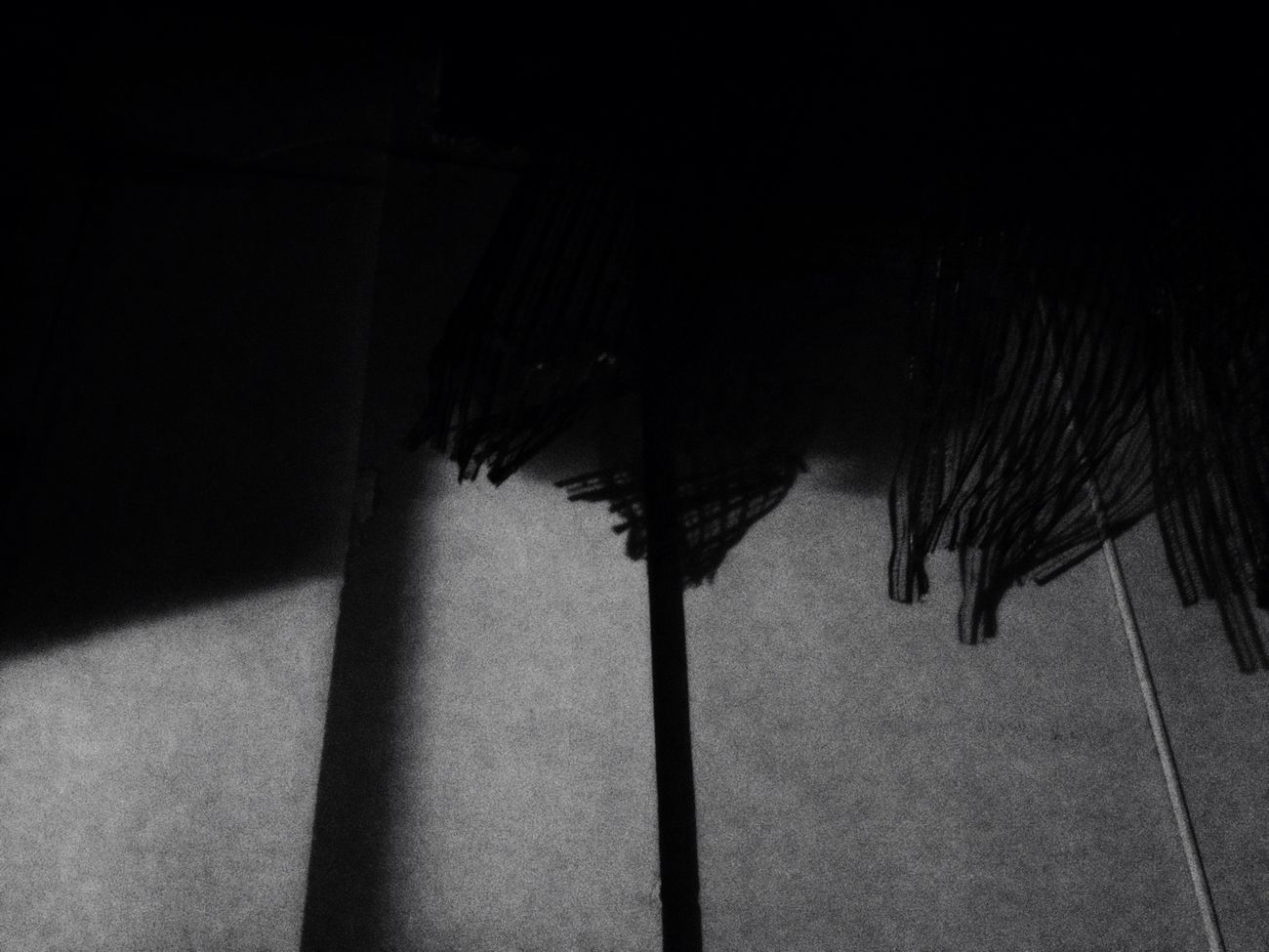Blackandwhite Abstract