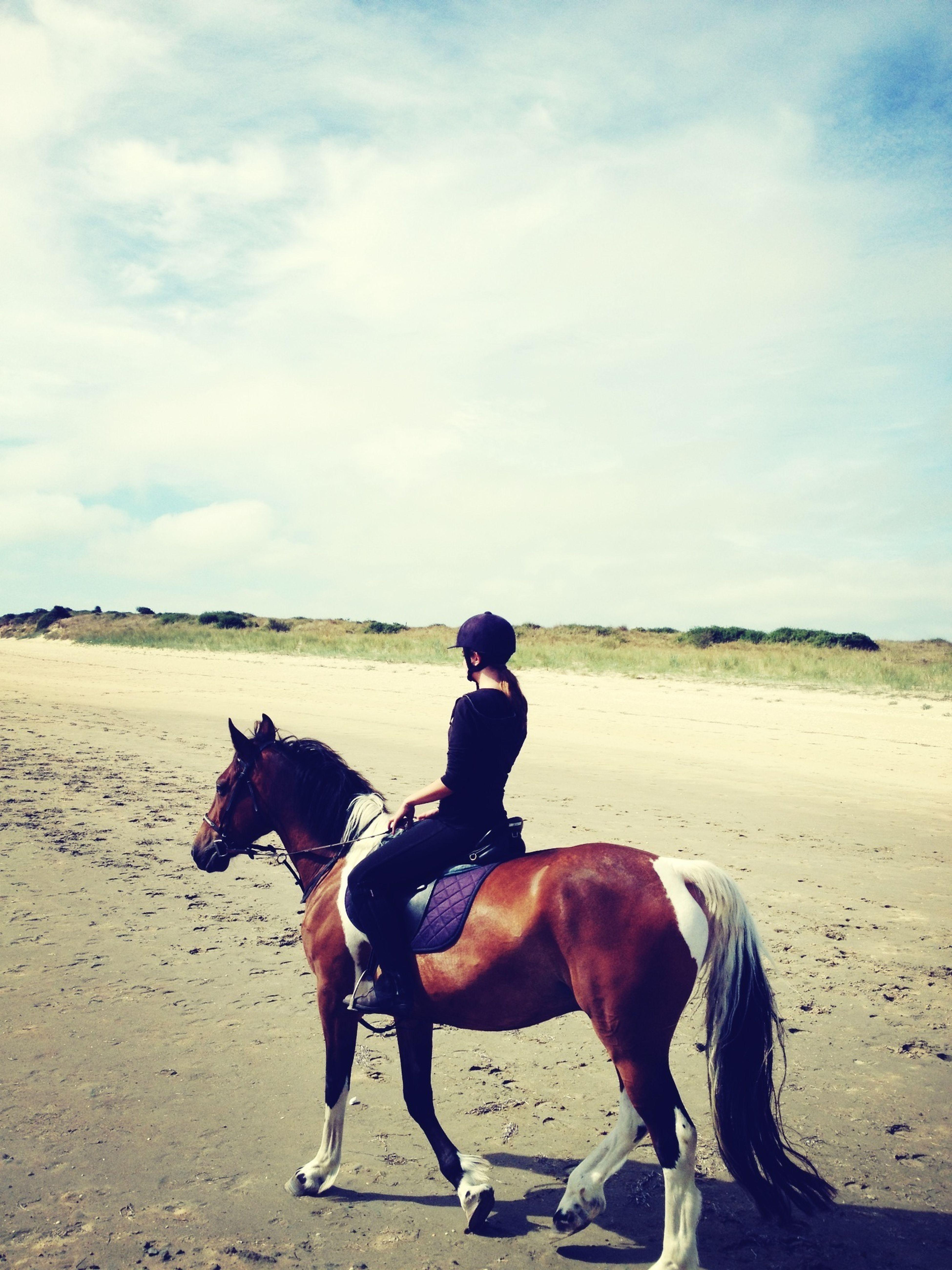 balade a cheval love ❤