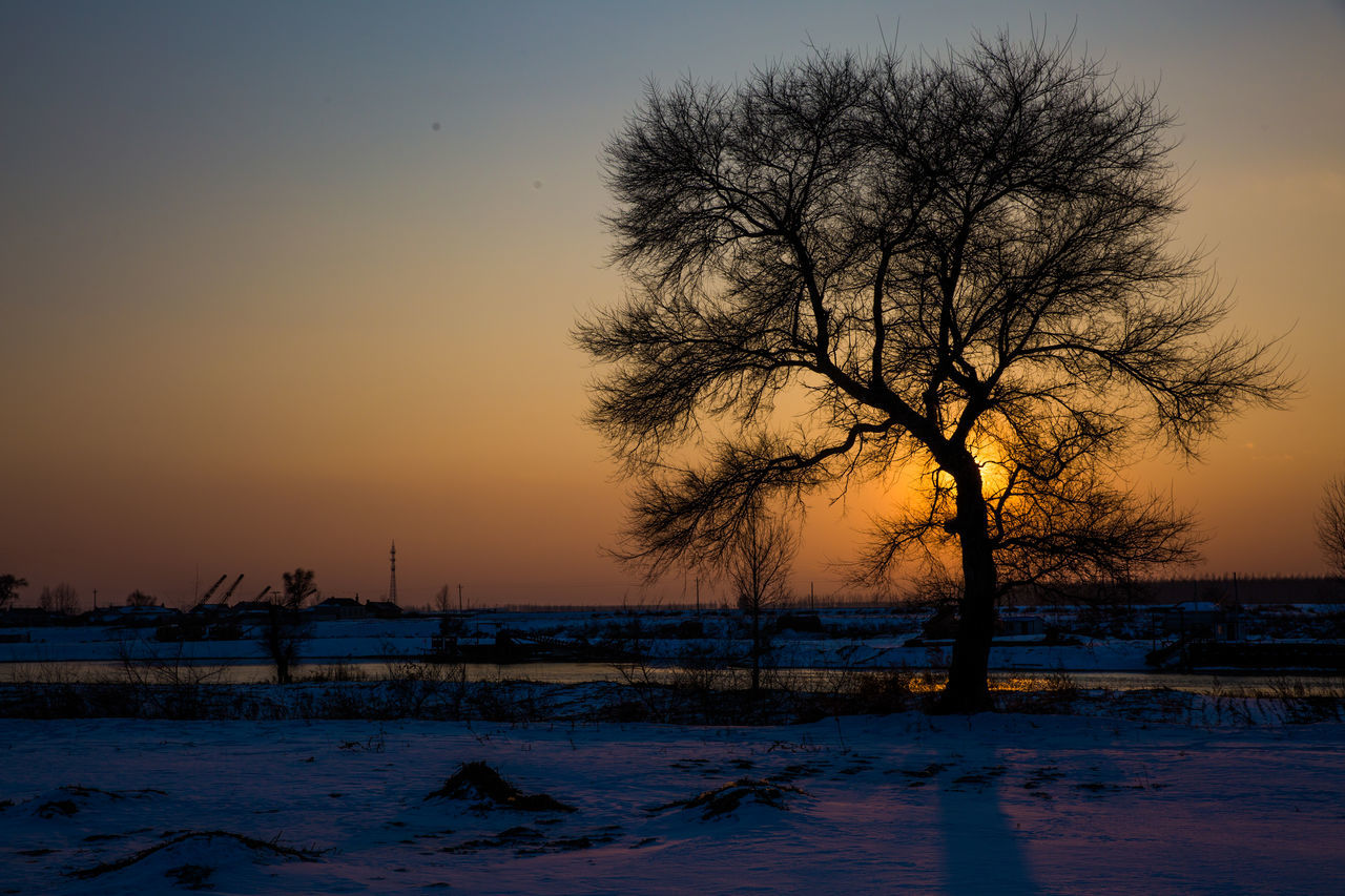 sunset, winter, cold temperature, nature, beauty in nature, snow, tranquility, bare tree, tree, scenics, cold, tranquil scene, frozen, sky, outdoors, no people, landscape, branch, clear sky, water, day