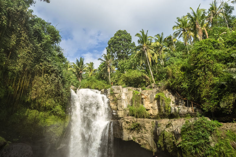 Bali Beauty In Nature Day Forest Growth Long Exposure Motion Nature No People Outdoors Paradise River Scenics Sky Sun Tree Tropical Water Waterfall