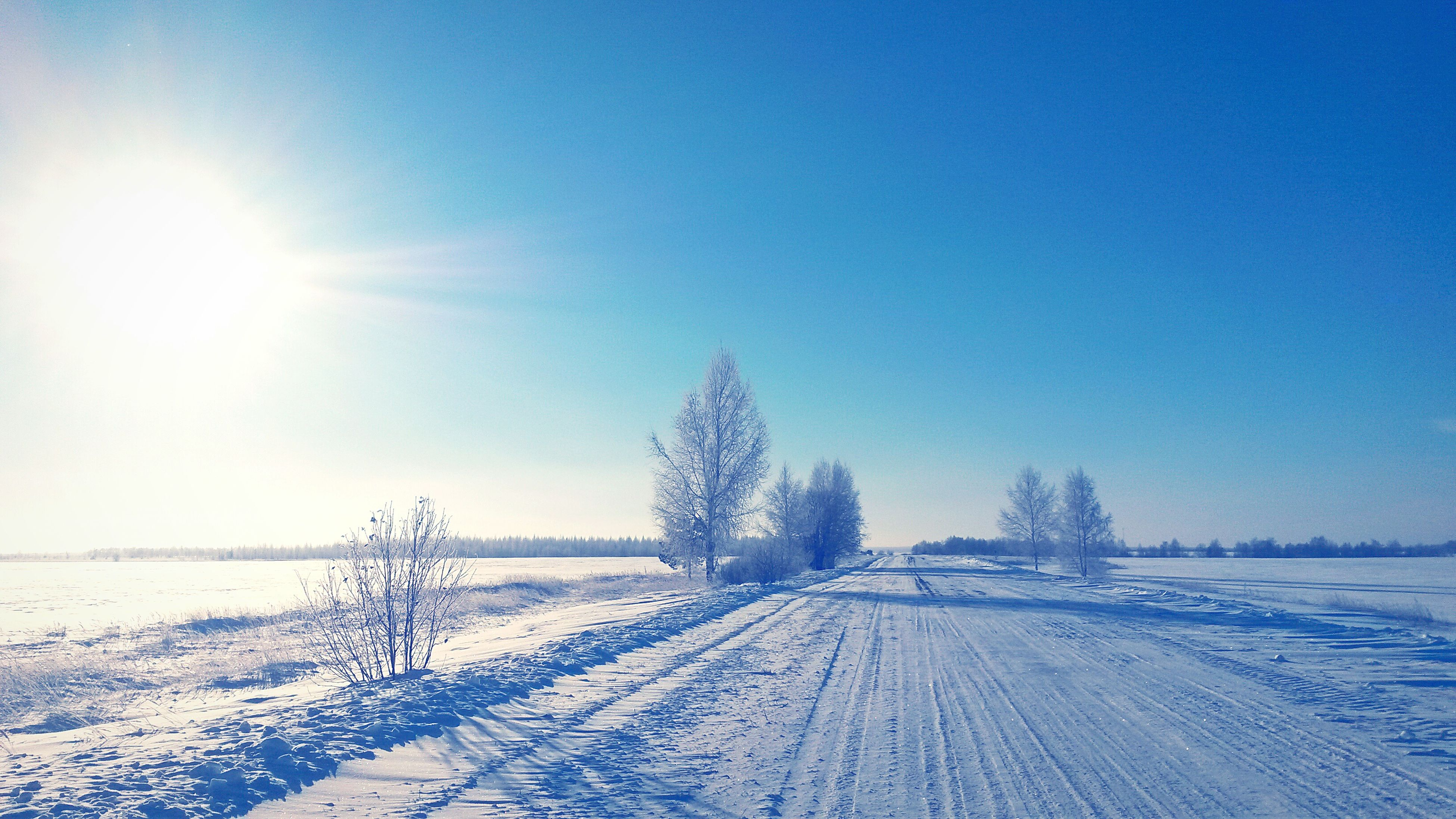 snow, winter, cold temperature, season, weather, clear sky, covering, tranquil scene, landscape, tranquility, the way forward, snow covered, frozen, nature, field, beauty in nature, blue, white color, sun, scenics