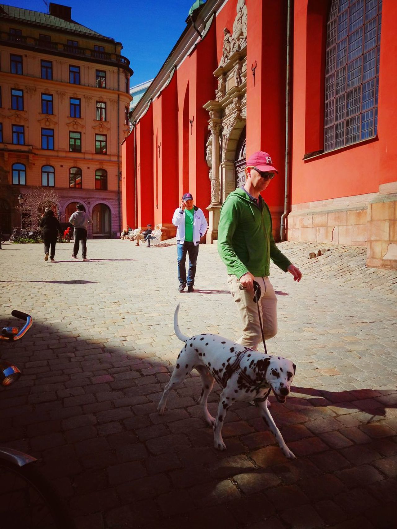 Architecture People Built Structure Building Exterior Real People Outdoors Day City Sweden People Watching Stockholm Streetphotography City Life Dalmatian Dog Dog Walker
