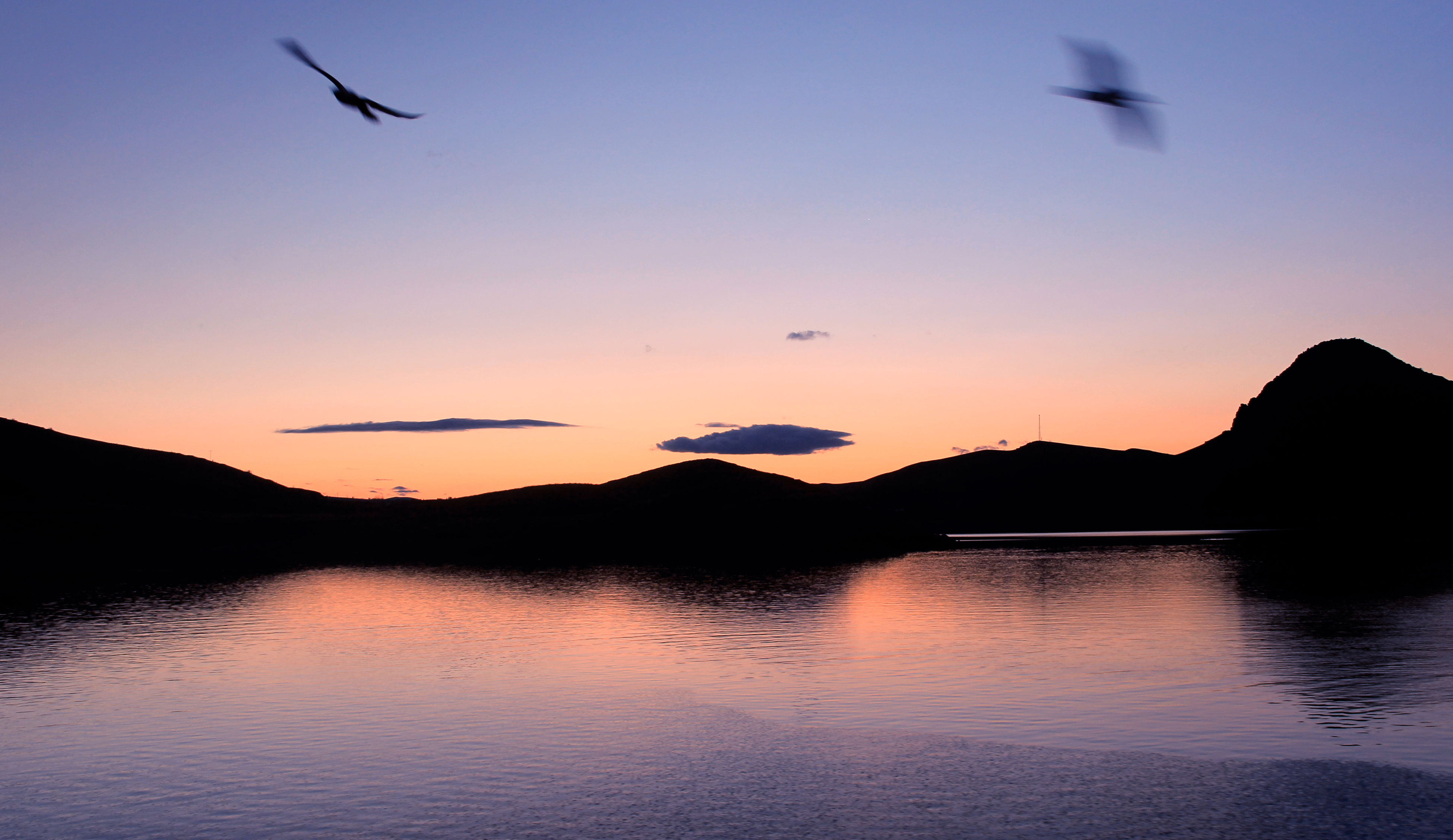 flying, sunset, bird, animal themes, animals in the wild, silhouette, orange color, nature, animal wildlife, water, reflection, sky, beauty in nature, scenics, no people, one animal, tranquility, outdoors, mountain, day