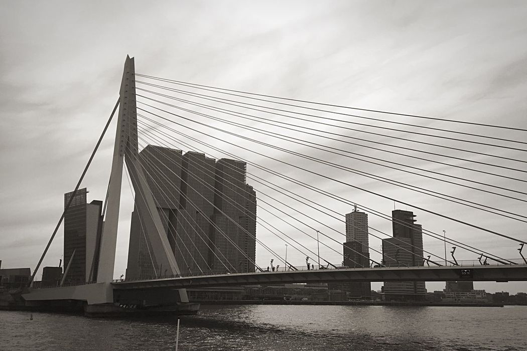 Architecture Built Structure Building Exterior City Bridge - Man Made Structure Skyscraper Suspension Bridge Connection Cable-stayed Bridge Engineering Modern Waterfront Water Outdoors River Low Angle View Cloud - Sky Infrastructure Erasmusbrug Wilhelminapier Rotterdam Urban Blackandwhite Photography Blackandwhite Cityscape