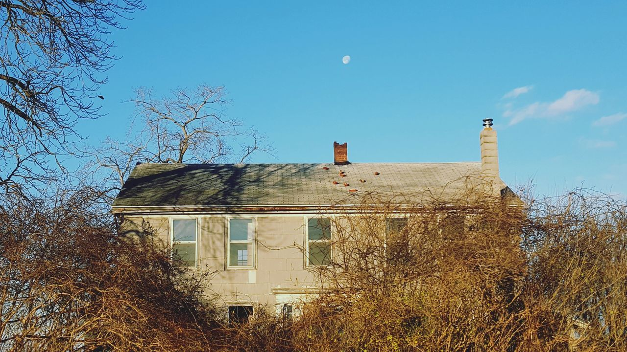 This old house Building Exterior Architecture Sky No People Outdoors Flying Bird Moon And Clouds Empty House Overgrowth And Unmaintained Windows Farmhouse Morning Vacant House