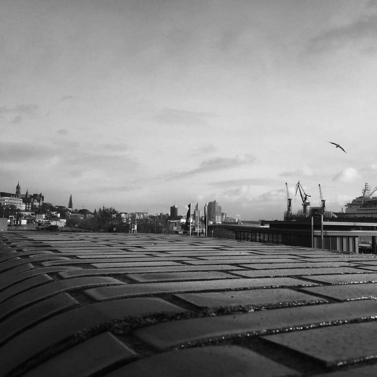 Reeperbahn  Hamburg City Ship Blackandwhite