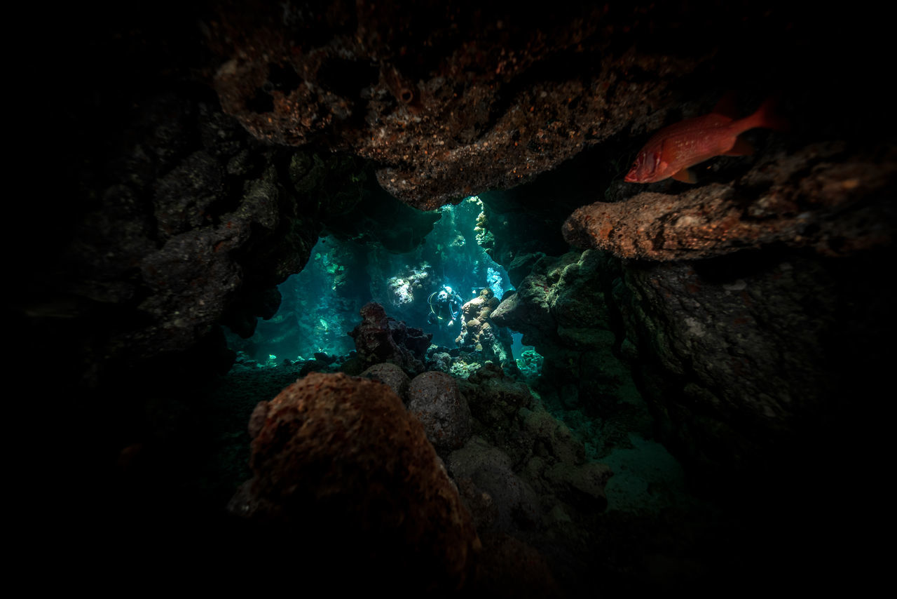 red sea Adventure Aquatic Sport Beatiful Nature Beauty In Nature Cave Coral Escape Explorer Extreme Adventures Light And Shadow Nature No People Ocean RedSea Rock - Object Rock Formation Scuba Diving Scubadiving Sea Solo Traveller Travel Photography UnderSea Underwater Unusual Beauty Water