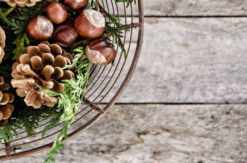 Beautiful stock photos of christmas,  Chestnut - Food,  Food,  Food And Drink,  Freshness